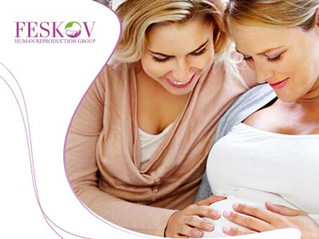What Is Surrogate Motherhood? picture